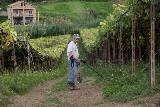 Steve hunting in a vineyard in Italy